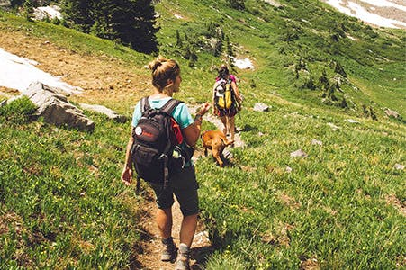 hiking in BC summer 2020
